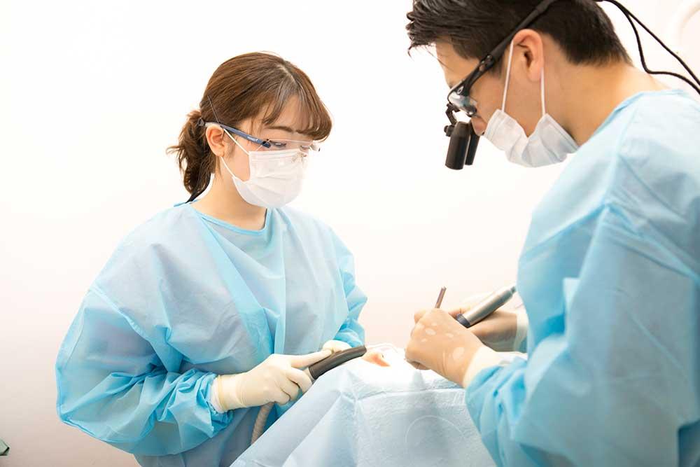 歯科医師と口腔外科専門医
